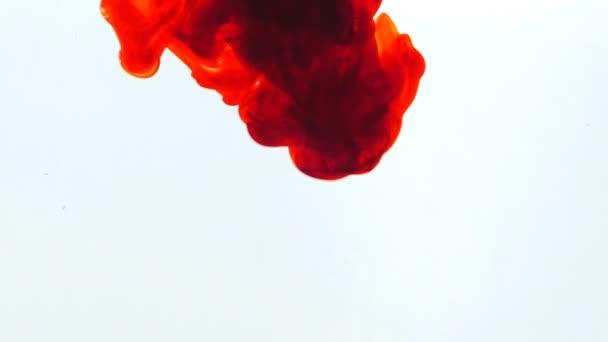 Vörös tinta a vízben.