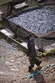 Turkish Fisherman and haul