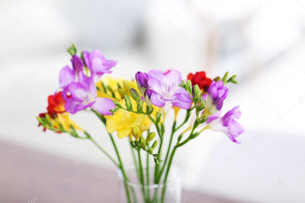 beautiful freesias flowers stock photo belchonock 100930822. Black Bedroom Furniture Sets. Home Design Ideas