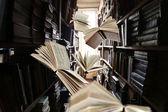 Létající knihy o knihovny regály