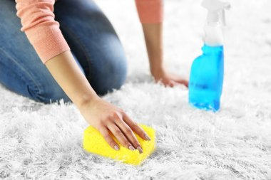 Woman cleaning carpet with sponge and spray