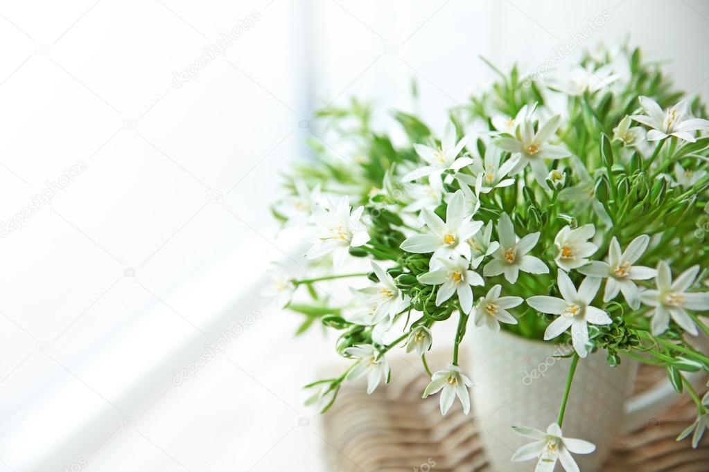 kleine weiße blumen — Stockfoto © belchonock #112646420