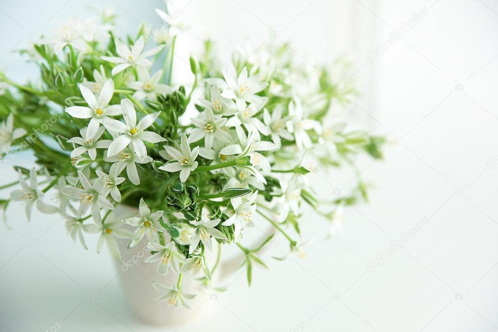 kleine weiße blumen — Stockfoto © belchonock #113535424