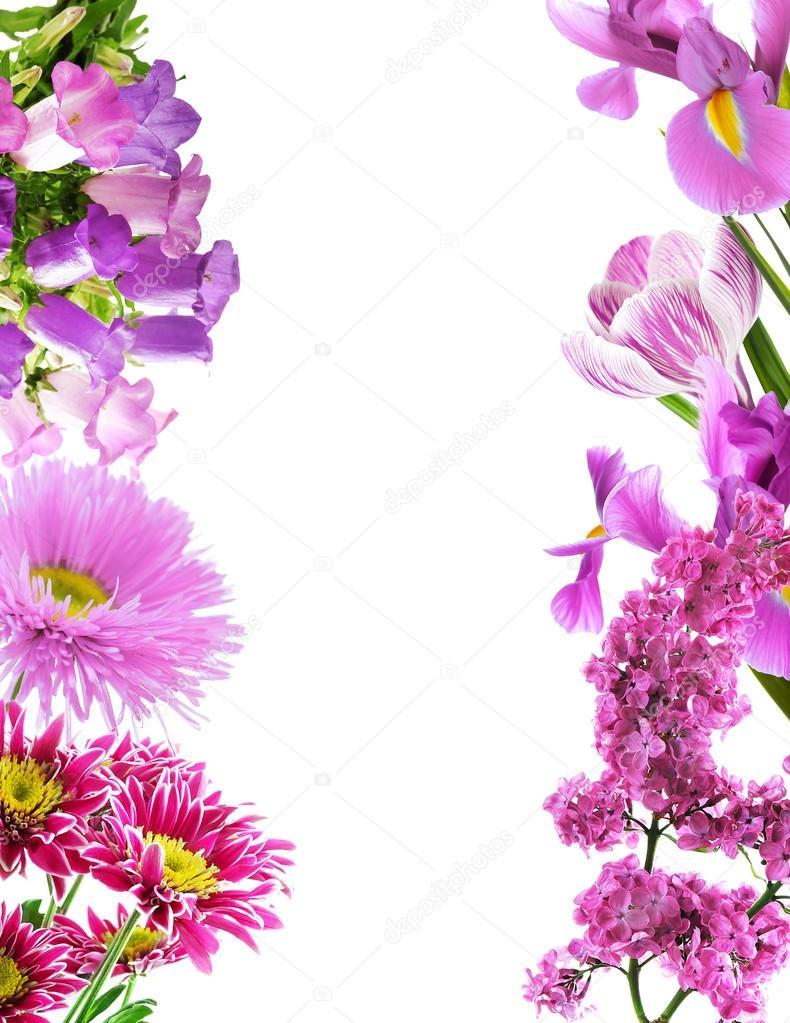 marco de flores de color púrpura — Fotos de Stock © belchonock ...