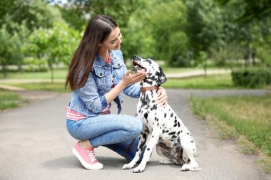 Owner with dalmatian dog