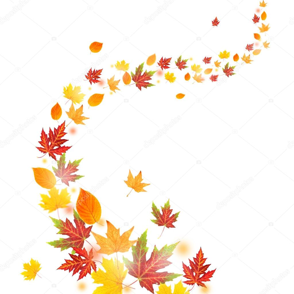 autumn falling leaves stock photo belchonock 124359714