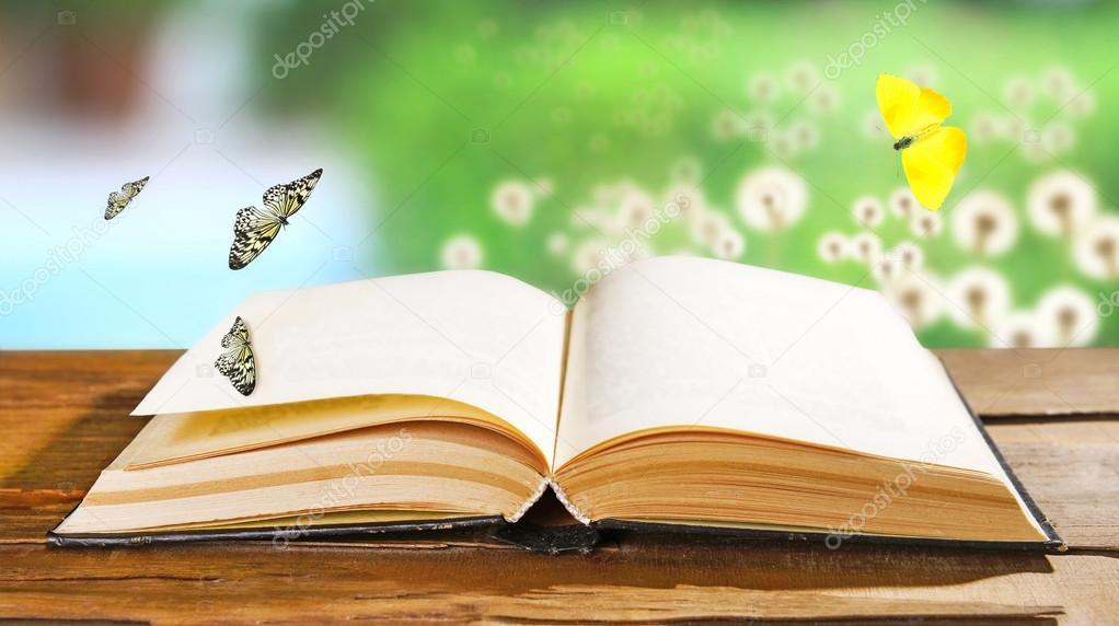 Viejo Libro Con Mariposas Al Aire Libre