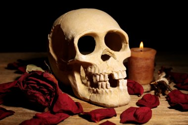 Human skull with dried rose petals
