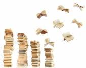 fliegende Bücher isoliert auf weiss