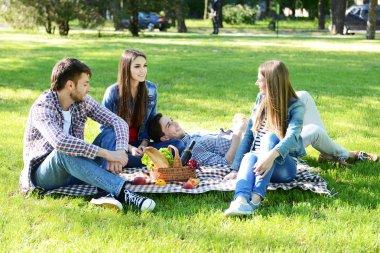 Happy friends on picnic