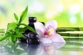 Fotografie Wellness kameny, bambusová větve a bílá orchidej na stole na přírodní pozadí