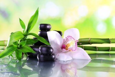 Spa stones, bamboo branches and white orchid on table on natural background