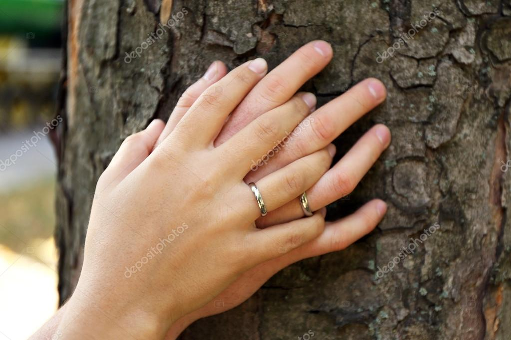 two hands with wedding rings � stock photo 169 belchonock