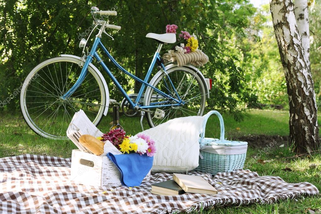 Old bicycle and picnic snack on checkered blanket on grass in park