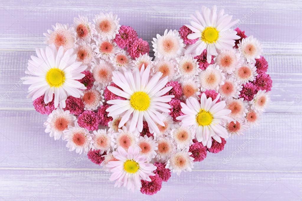 Imágenes Hermosas De Flores Hermosas Flores En Forma De Corazón