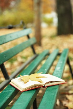 Open book with leaf on it lying on the bench in autumn park stock vector