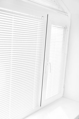 White window with blinds