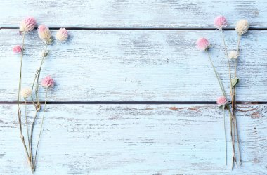 Dried flowers on color wooden background