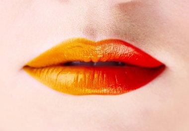 Beautiful female lips