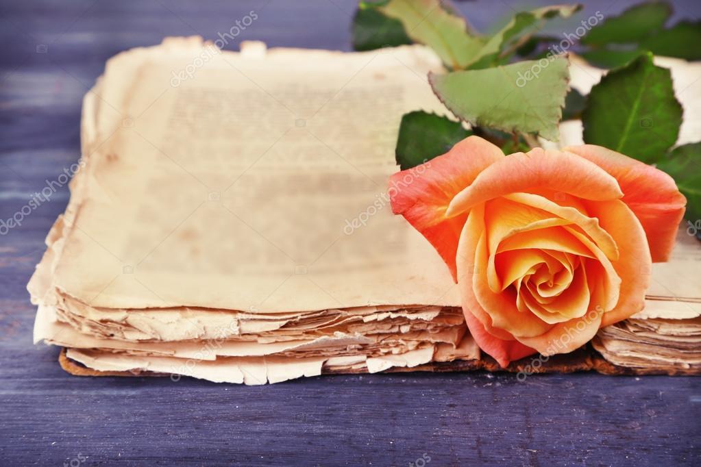 Rosa Tea Apra il vecchio libro sulla tabella di colore del legno ...