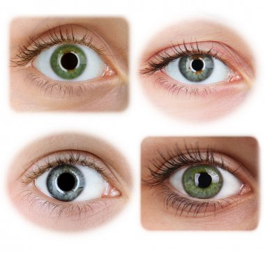 Collage of beautiful female eyes