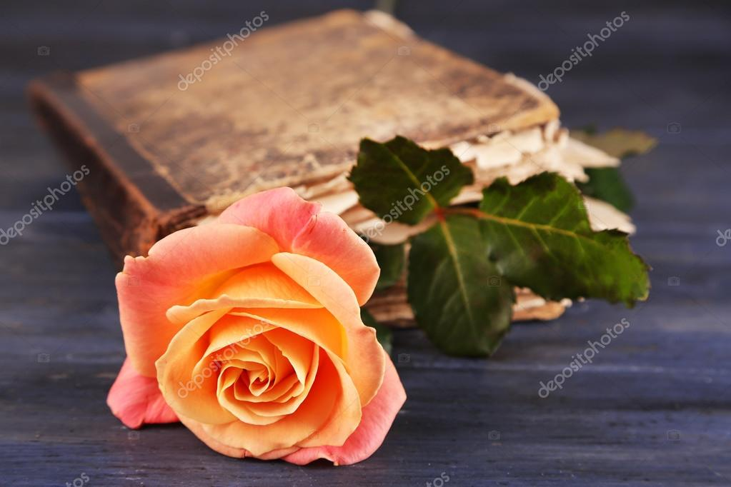 Rosa Tea con il vecchio libro su sfondo di tavolo in legno di colore ...