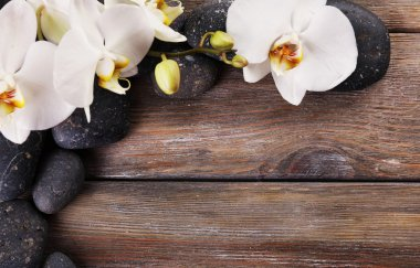 Spa stones and orchid flower on wooden background