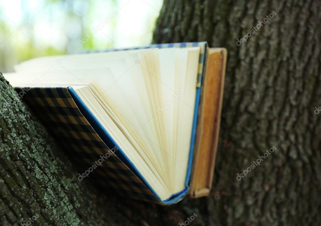 Books on tree, close-up