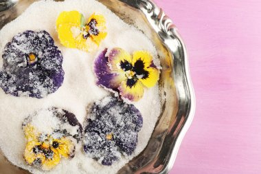 Candied sugared violet flowers