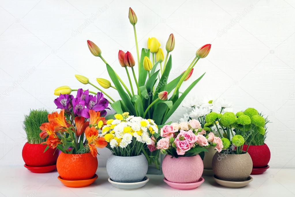Beautiful flowers in pots on light background — Photo by ...