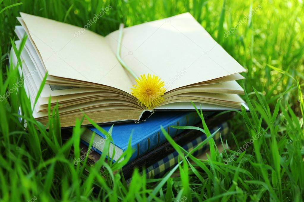 Stacked books with flower in grass