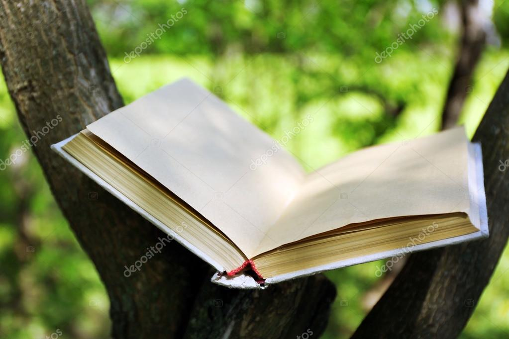 Book on tree branch, close-up