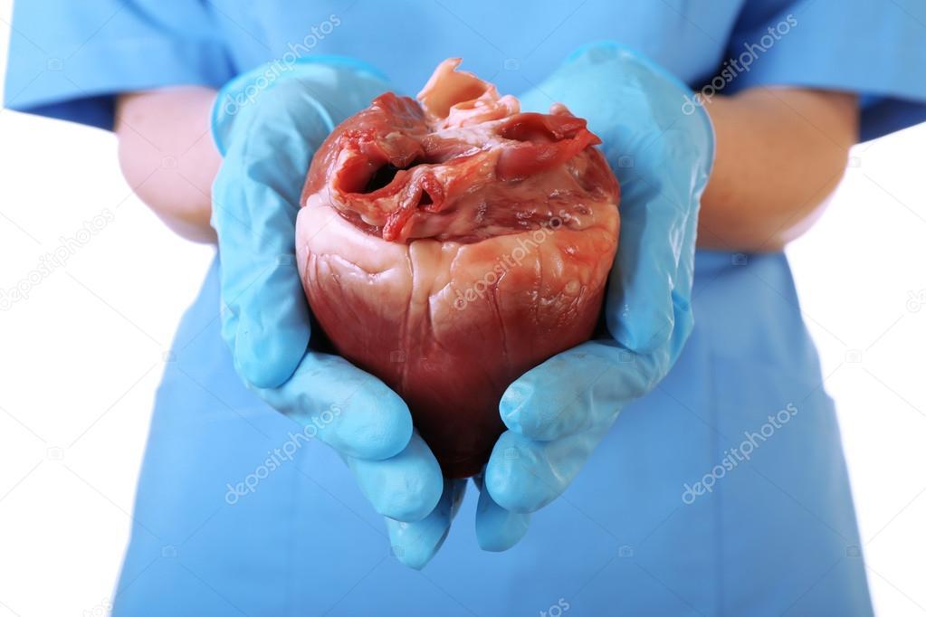ласково сердце в руках хирурга картинки дачу энгельсе недорого