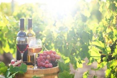 Tasty wine on wooden barrel