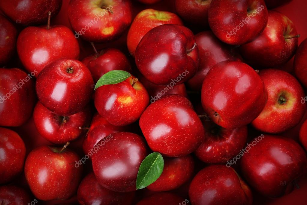 red colored fruits - HD 1360×910