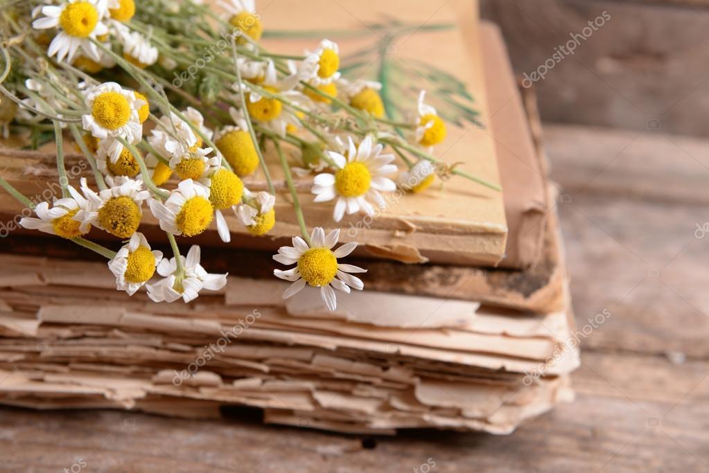 Vecchi libri con fiori secchi sulla tabella primi piani for Vecchi piani colonica con foto