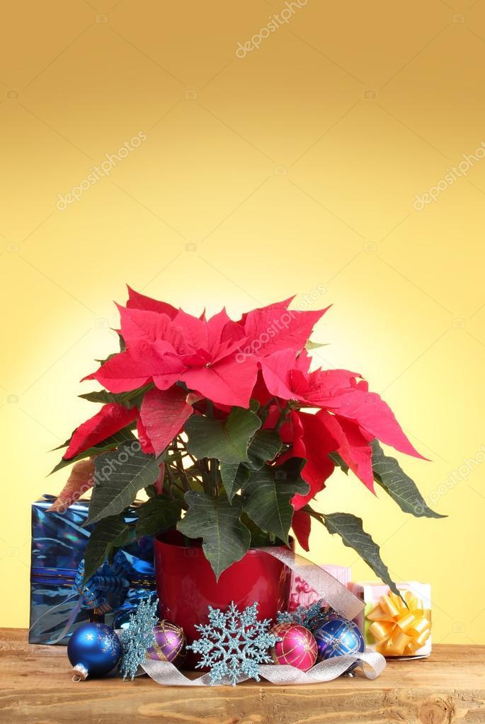 Stella Di Natale Legno.Bella Stella Di Natale Con Palline Di Natale E Regali Sul Tavolo Di