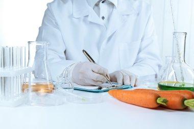 Scientist examines carrots