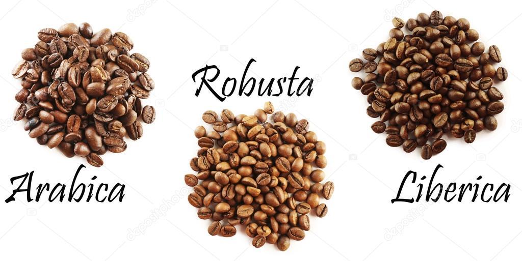 Different Coffee Beans Stock Photo 169 Belchonock 82595978