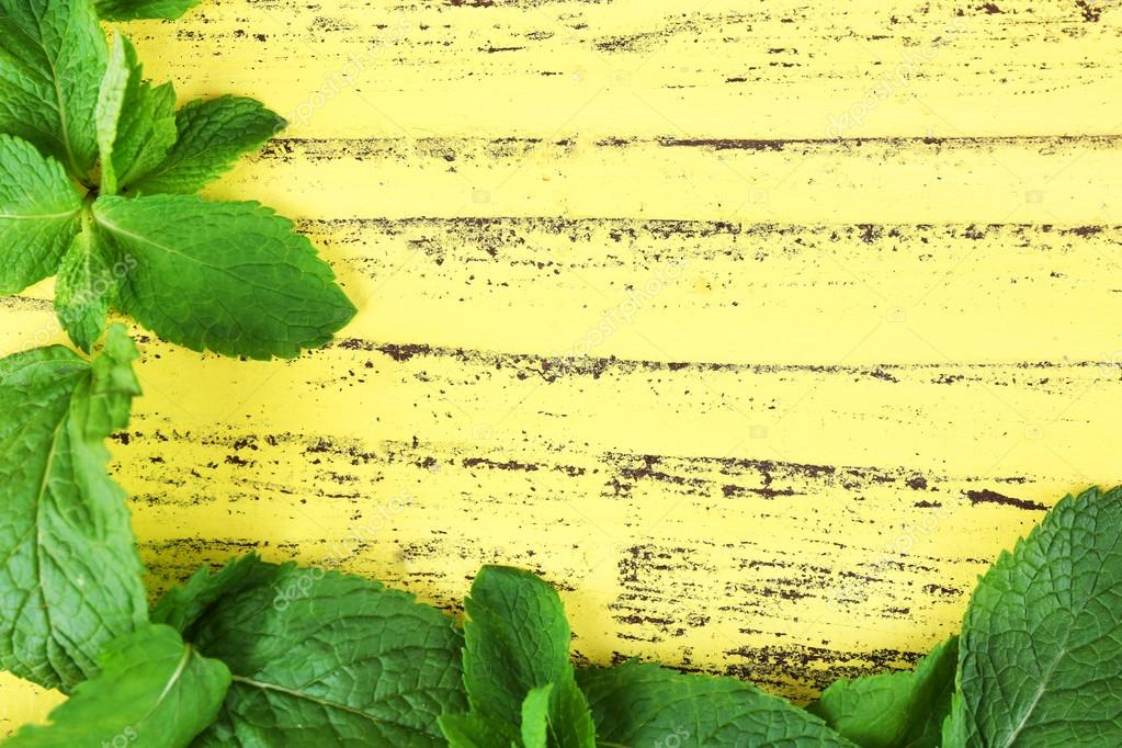 Marco de menta fresca — Foto de stock © belchonock #89084166