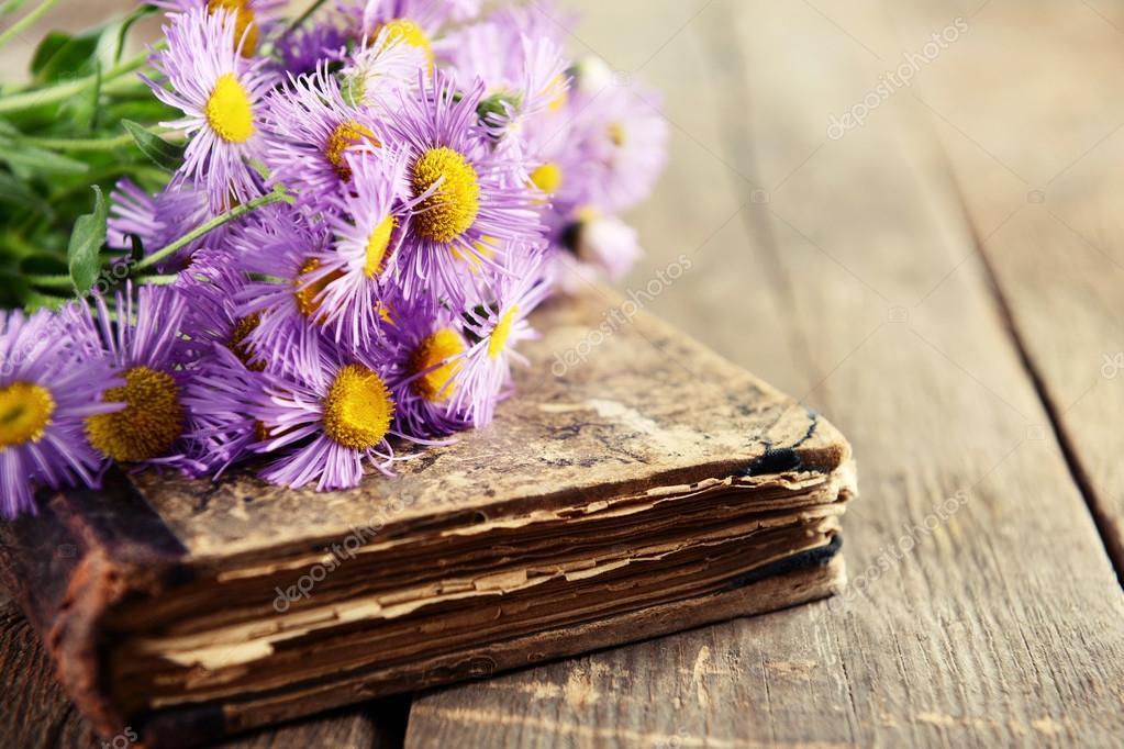 книги красивые фото