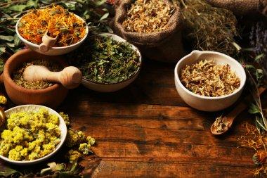 Assortment of dry medicinal herbs