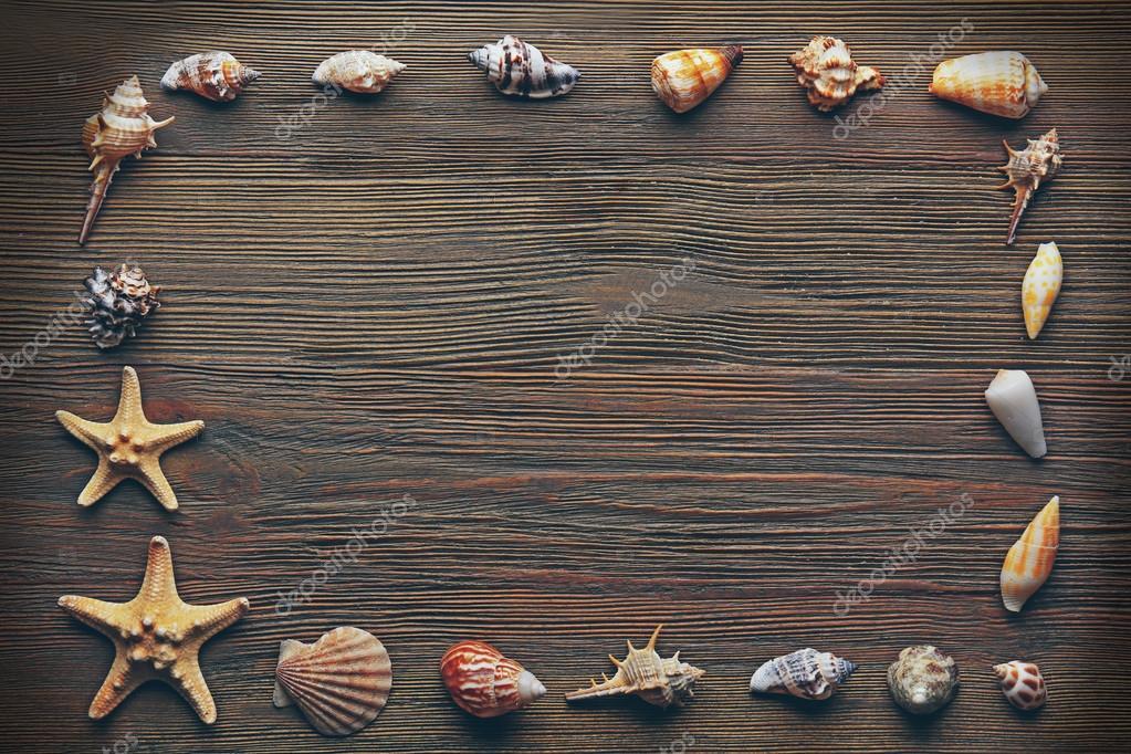 Marco concha en madera — Foto de stock © belchonock #92626486