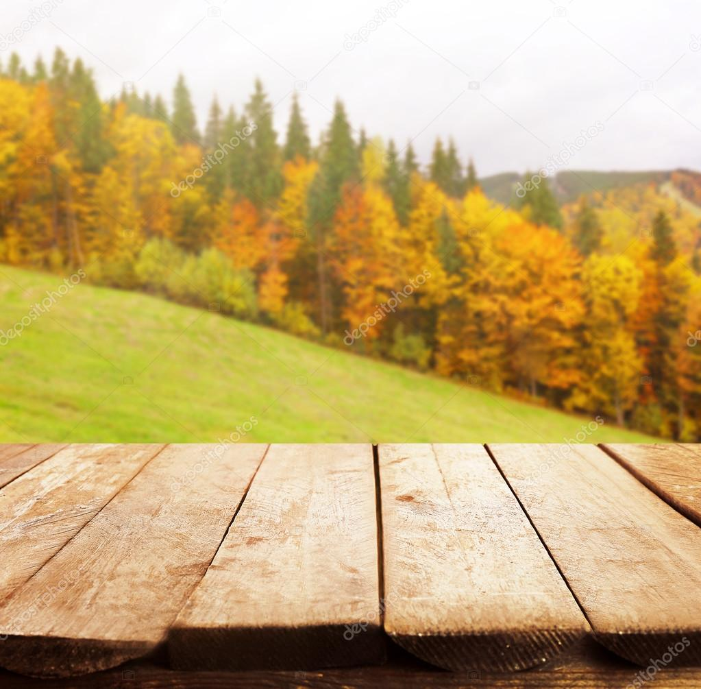 nature background with wooden floor