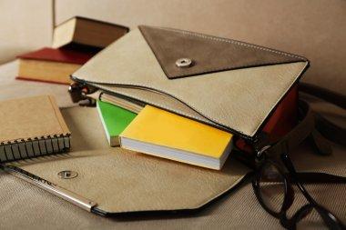female handbag with books