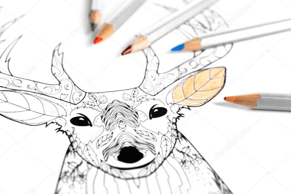 Färbung der Hirsche mit Bleistiften — Stockfoto © belchonock #97765578