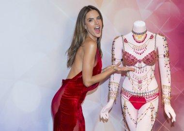 Victoria's Secret Dream Angels Fantasy Bra