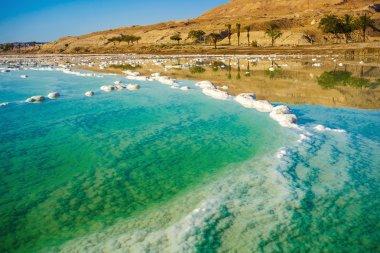 landscape with dead sea coastline
