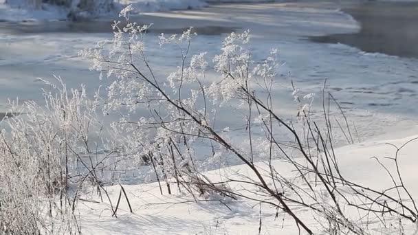 Téli vidéki táj Frozen River
