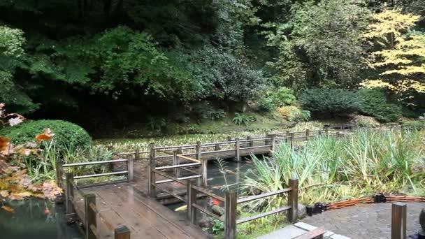 Posun filmu dřevěný chodník mostu přes Koi rybník s listnatými stromy a Evergreen v Portlandu japonská zahrada v podzimní sezóně 1080p